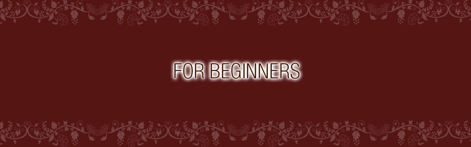 FOR BEGINNERS
